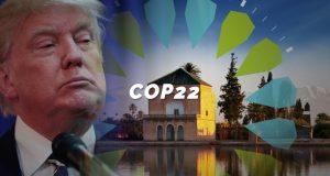 Imagem Donald Trump Sustentabilidade coop 22