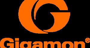 Web Gigamon Free Standing Orange Logo