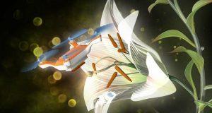 Imagem drone abelha