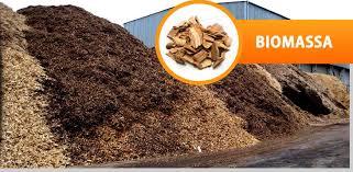 Imagem biomassa