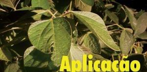 Aplicação de fungicida
